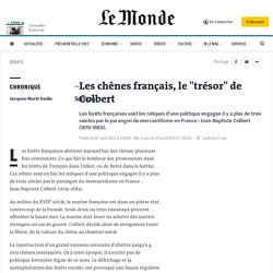 """Les chênes français, le """"trésor"""" de Colbert"""