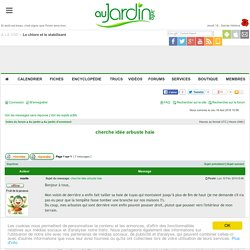 Haie vive persistante rustique, conseils forum