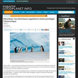 Manchots : les chercheurs appellent à mieux protéger l'Antarctique - Magazine GoodPlanet Info