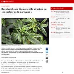 Des chercheurs découvrent la structure du «récepteur de la marijuana»