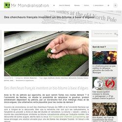 Des chercheurs français inventent un bio-bitume à base d'algues