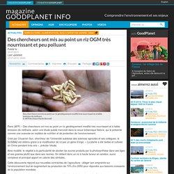 GOOD PLANET 23/07/15 Des chercheurs ont mis au point un riz OGM très nourrissant et peu polluant