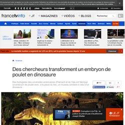 Des chercheurs transforment un embryon de poulet en dinosaure