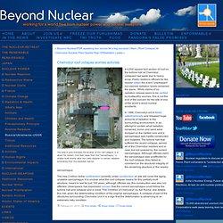 Russia/Ukraine/ex-USSR - Chernobyl roof collapse worriesactivists