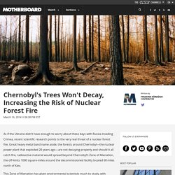 Chernobyl's Trees Won't Decay, Increasing the Risk of Nuclear Forest Fire