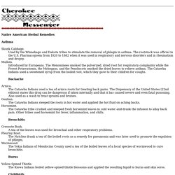 Cherokee Messenger - Native American Herbal Remedies