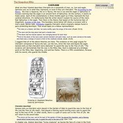 Cherubim: The Unspoken Bible