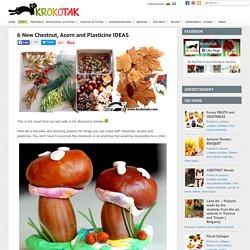 kasztany, żołędzie i liście