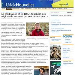 La méditation et le TDAH touchent des régions du cerveau qui se chevauchent