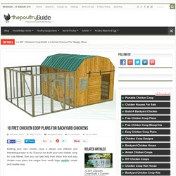 10 best free chicken coop building plans