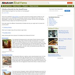 Chicken Breed Profiles - Breeds for the Small Farm