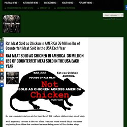 Rat Meat Sold as Chicken in AMERICA 36 Million lbs of Counterfeit Meat Sold in the USA Each Year