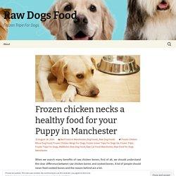 Frozen chicken necks a healthy food for your Puppy in Manchester