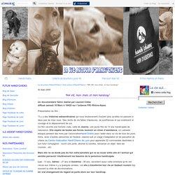 """""""MA VIE, mon chien, et mon handicap"""" - La vie autour d'Handi'Chiens"""