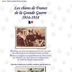 Les chiens de France de la Grande Guerre 1914-1918