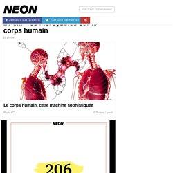 21 chiffres incroyables sur le corps humain