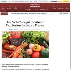 Les 5 chiffres qui montrent l'explosion du bio en France