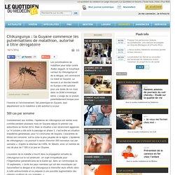 Chikungunya : la Guyane commence les pulvérisations demalathion, autorisé àtitre dérogatoire
