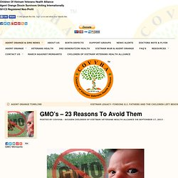 GMO's – 23 Reasons To Avoid Them