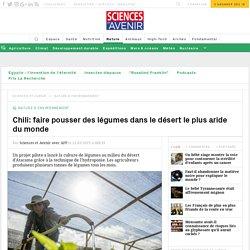 Chili: faire pousser des légumes dans le désert le plus aride du monde