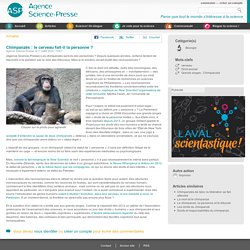 Chimpanzés : le cerveau fait-il la personne