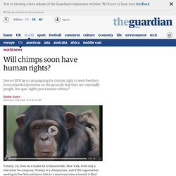 Will chimps soon have human rights?