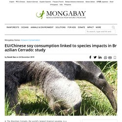 MONGABAY 24/12/19 EU/Chinese soy consumption linked to species impacts in Brazilian Cerrado: study
