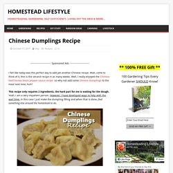 Chinese Dumplings Recipe