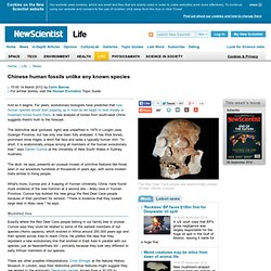 Chinese human fossils unlike any known species - life - 14 March 2012