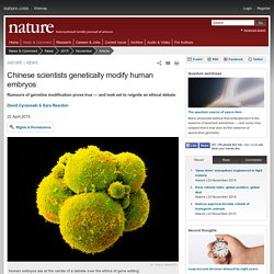 Chinese scientists genetically modify human embryos