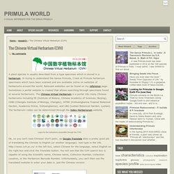 The Chinese Virtual Herbarium (CVH) ~ Primula World