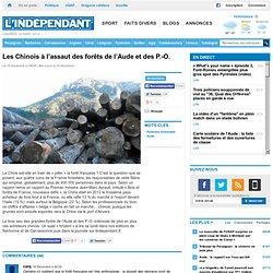 Les Chinois à l'assaut des forêts de l'Aude et des P.-O.