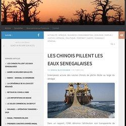 LES CHINOIS PILLENT LES EAUX SENEGALAISES – Sénégal Black Rainbow