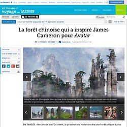 forêt Pandora