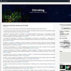 Chiroblog