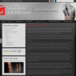 The Nervous System, Pennsauken Chiropractor Chiropractic Pennsauken Chiropractors New Jersey 08109
