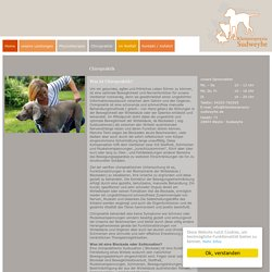 Kleintierpraxis Weyhe - Sudweyhe, Ihr kompetenter Tierarzt für Klein- und Heimtiere