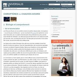 CHIROPTÈRES ou CHAUVES-SOURIS, Biologie et comportement