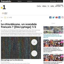 Le chlordécone, un scandale français ? [Décryptage] 1/2 - outre-mer 1ère