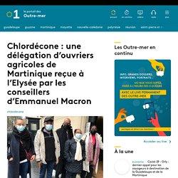 LA 1ERE 27/01/21 Chlordécone : une délégation d'ouvriers agricoles de Martinique reçue à l'Elysée par les conseillers d'Emmanuel Macron