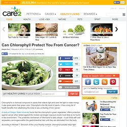 Can Chlorophyll Protect Us From Cancer?