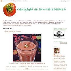 Soupe tomate et cannelle