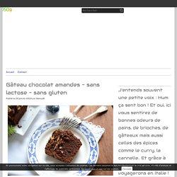 Gâteau chocolat amandes - sans lactose - sans gluten