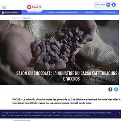 Salon du chocolat : l'industrie du cacao fait toujours plus d'accros - LCI