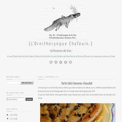Le Blog de l'Ornithorynque Chafouin