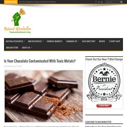 Is Your Chocolate Contaminated With Toxic Metals?