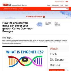 How the choices you make can affect your genes - Carlos Guerrero-Bosagna