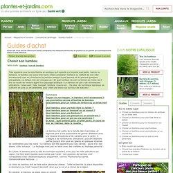 Choisir son bambou (Guides d'achat)