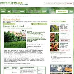 Choisir sa haie de jardin (Guides d'achat)