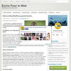 Choisir un thème WordPress, ça prend 5 minutes…